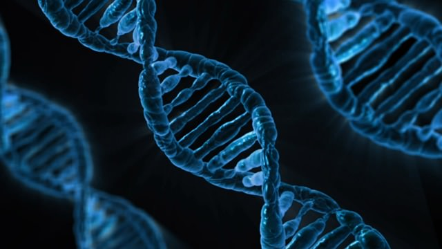 Największym odkryciem biologii jest poznanie DNA
