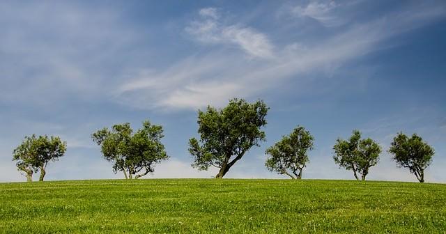 Ochrona środowiska naturalnego jest bardzo ważna