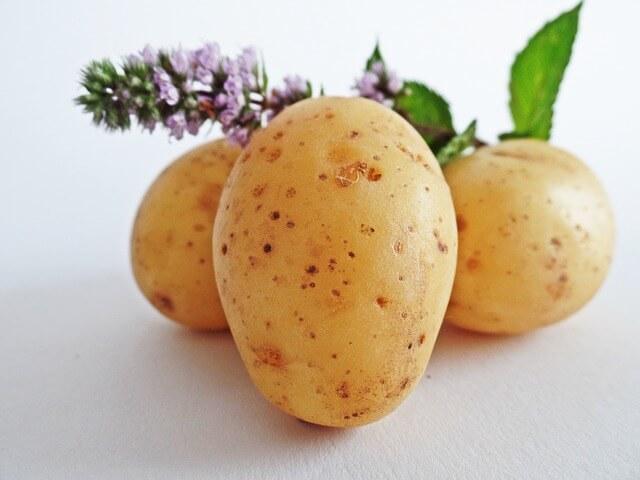 Trzy ziemniaki na białym tle, z roślinką na górze