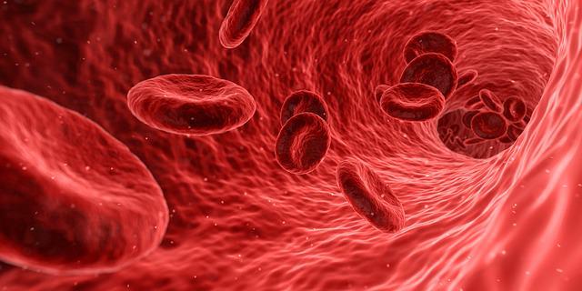 Krwinki czerwone w układzie