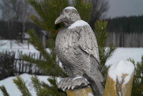 Odstraszacz na ptaki