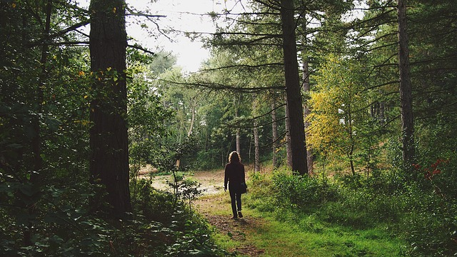 Mężczyzna spaceruje po lesie